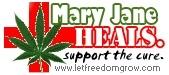 American Alliance for Medical Cannabis